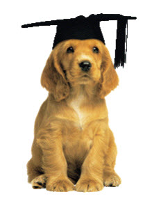 Dog Obedience Training Graduation